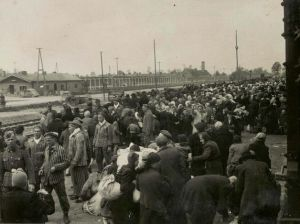 auschwitz -birkenau - arrival of a transport -may 44