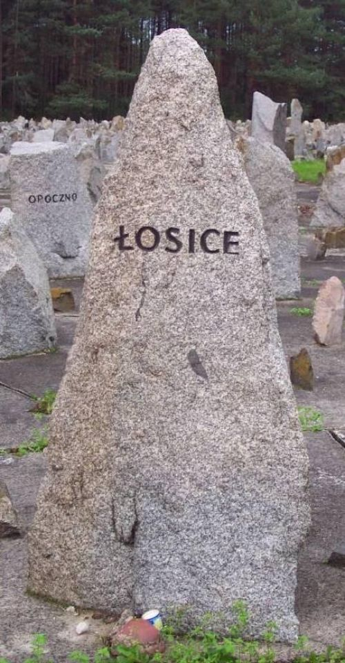 losice 9